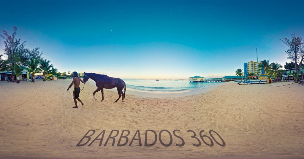 barbados horse washed down in sea and captured on 360 video